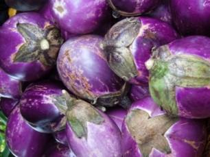 Eggplant-PoF