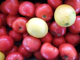 Lemons and Tomatoes-PoF
