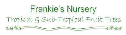 Frankie's Nursery-pending approval